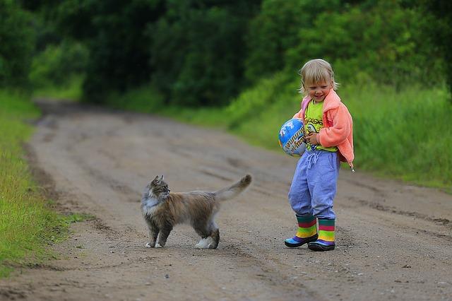 El valor de las cosas y enseñar a los niños a cuidar