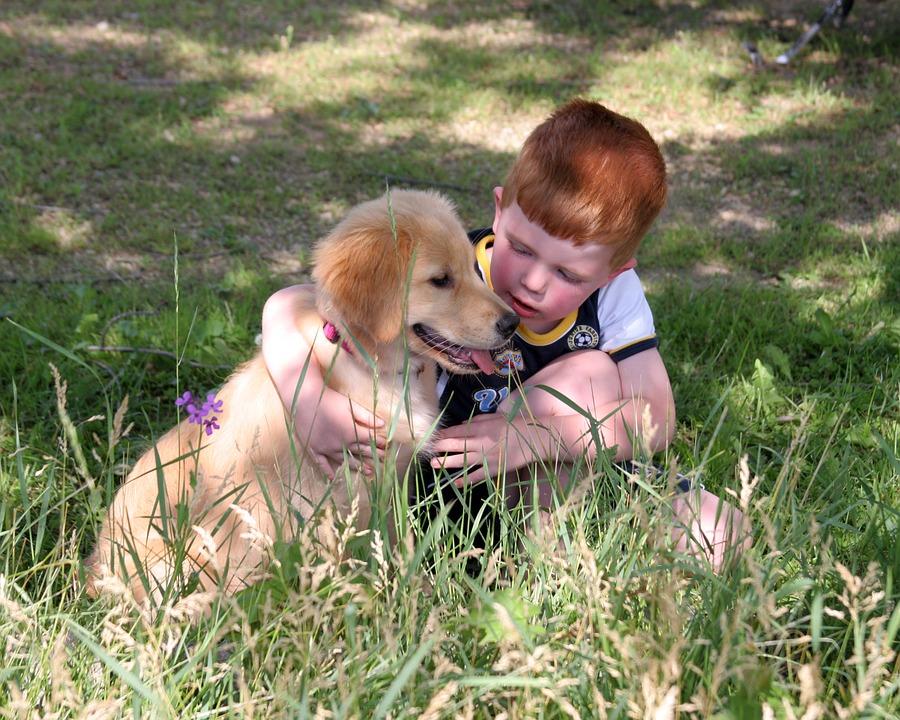 Ventajas de tener una mascota en la educación del niño-pelirojo