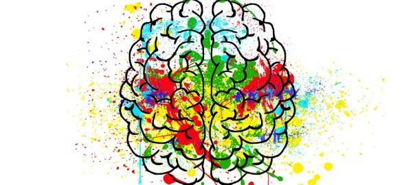 Cuando llevar a un niño a un psicólogo-cerebro colorido